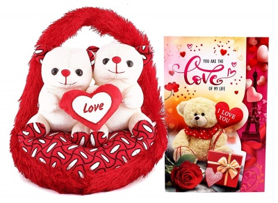 Love Gifts for Girlfriend - Couple Teddy with Greeting Card-Love Gifts for Wife-Girlfriend-Fiancee-Valentine's Day Gift