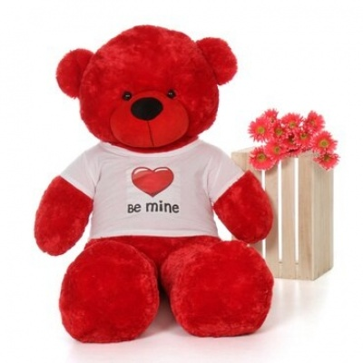 4 Feet Big Red Teddy Bear Wearing Be Mine T-Shirt 48 Inch T-shirt Teddy You're Personalized Message Teddy Bears