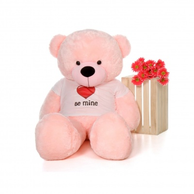 4 Feet Big Pink Teddy Bear Wearing Be Mine T-Shirt 48 Inch T-shirt Teddy You're Personalized Message Teddy Bears