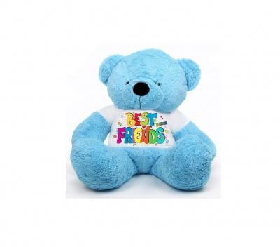 2 Feet Big Sky Blue Teddy Bear Wearing Best Friend's T-Shirt You're Personalized Message Teddy Bears