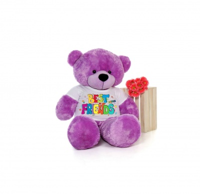 2 Feet Big Purple Teddy Bear Wearing Best Friend's T-Shirt You're Personalized Message Teddy Bears