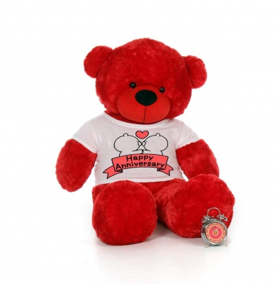 4 Feet Big Red Teddy Bear Wearing Happy Anniversary T-Shirt 48 Inch T-shirt Teddy You're Personalized Message Teddy Bears