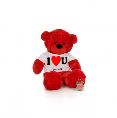 2 Feet Big Red Teddy Bear Wearing Love T-Shirt You're Personalized Message Teddy Bears