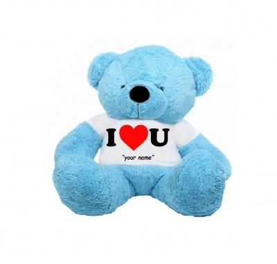 2 Feet Big Sky Blue Teddy Bear Wearing Love T-Shirt You're Personalized Message Teddy Bears