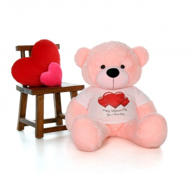 2 Feet Big Pink Teddy Bear Wearing Valentine's Day T-Shirt You're Personalized Message Teddy Bears