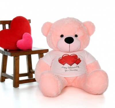 4 Feet Big Pink Teddy Bears Wearing Valentine's Day T-Shirt, 48 Inch T-shirt Teddy, You're Personalized Message Teddy Bears