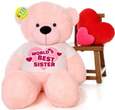 6 Feet Big Pink Teddy Bear Wearing Sister's T-Shirt 72 Inch T-shirt Teddy You're Personalized Message Teddy Bears
