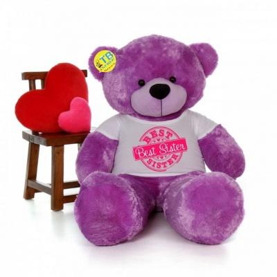 2 Feet Big Purple Teddy Bear Wearing Sister's T-Shirt You're Personalized Message Teddy Bears